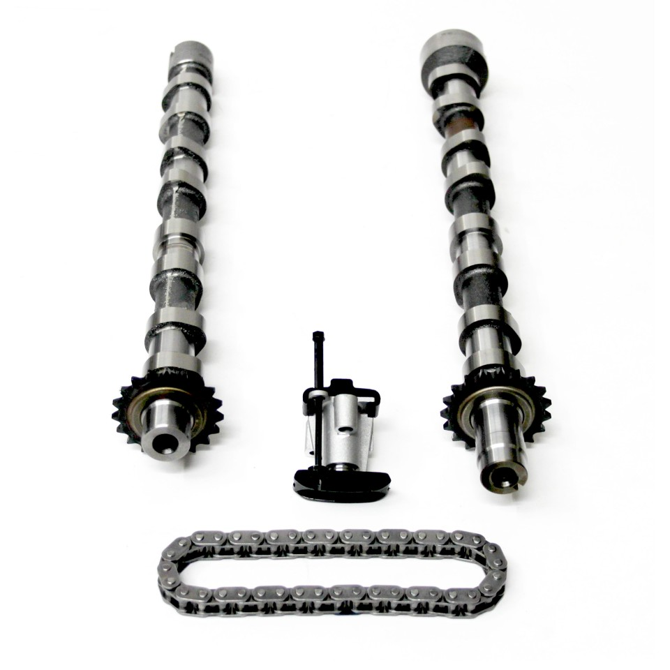2x Camshafts & Timing Chain Kit for Ford Galaxy, Mondeo, S-Max 2.2 TDCi