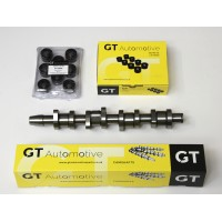 Ford Galaxy 1.9 TDi PD Billet Steel Camshaft & Lifters Kit