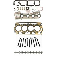 Head Gasket Set, Head Bolts and Camshaft for Citroen 1.6 8v HDi DV6