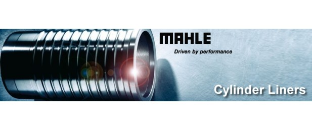 Mahle Liners