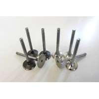 Full set of Engine Valves for Skoda Fabia, Octavia, Superb & Roomster 1.9 8v TDi