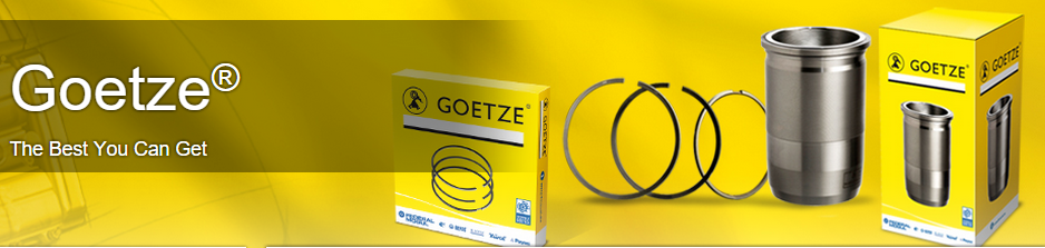 Goetze liners & piston rings